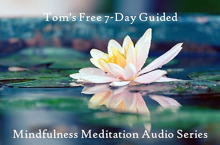 tom's free 7-day guided mindfulness meditation audio series